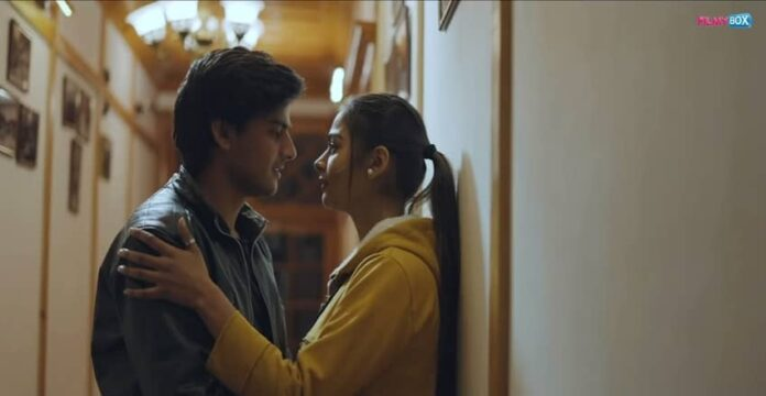 B.A. Pass 3 Full Movie Hindi Download 480p 720p
